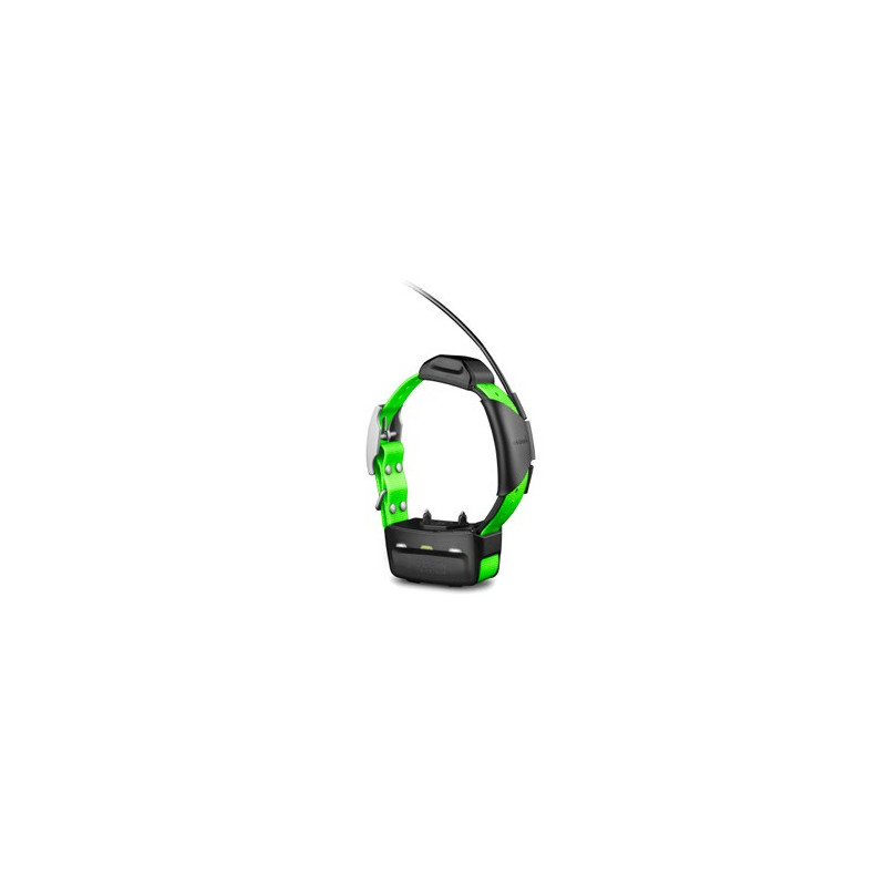 COLLAR GARMIN TT5 MINI