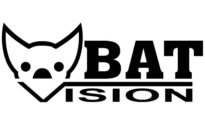 Bat Vision